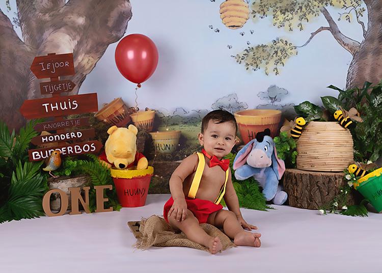 cakesmash-winnie-pooh-rotterdam-cakesmashfotograaf-babyfotograaf-kinderfotograaf-fotograafrotterdam-fotograafdenhaag-breda-spijkenisse-hoogvliet-denhaag-amsterdam-zeeland-baby-kind-zwanger