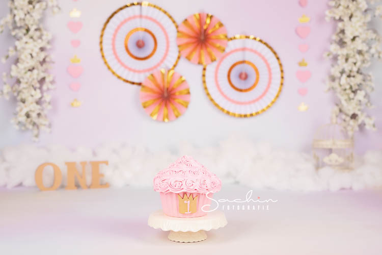 cakesmashfotograaf cakesmashrotterdam cakesmashdenhaag cakesmashspijkenisse cakesmashridderkerk cakesmashbreda cakesmashdordrecht smashthecake smashshoot cakesmashshoot